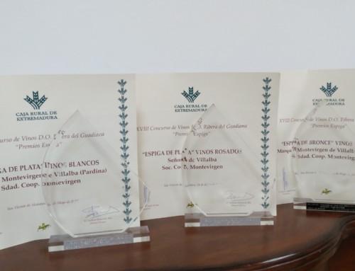 XVIII Edición Premios Espiga